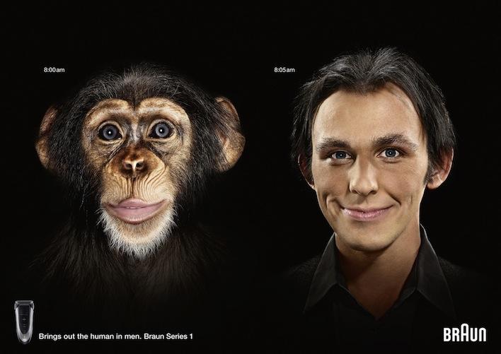 15_01244_001_Braun_Chimp_Series_1